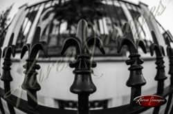 black and white of iron fleur de lais on an iron fence in garden district of new orleans louisiana