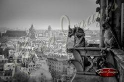 07_gargoyles_over_paris_notre_dame_cathedral_paris_black_and_white_photograph_paris_france
