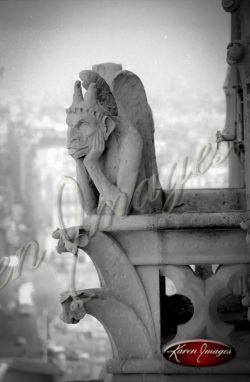 13_bob-on-break_notre_dame_cathedral_paris_black_and_white_photograph_paris_france