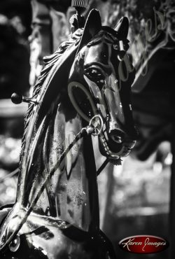 Carousel Horse bicycles Black and White image of Paris Street Scenes
