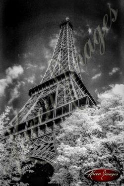 Eiffel tower Carousel Horse bicycles Black and White image of Paris Street Scenes