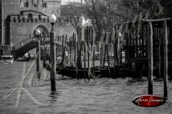 black and white image of venice italy