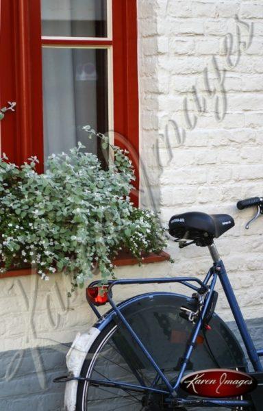 Rear Wheel Drive - Brugge Belgium bicycle