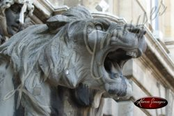 Budapest Pissed Lion