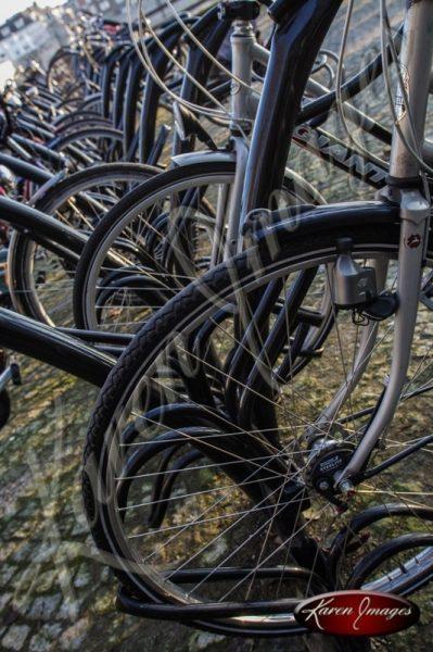 Wheels Mastricht Netherlands