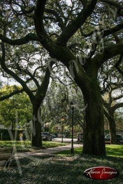 Pulaski Square Savannah Georgia