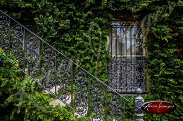 Botanical House Savannah Georgia