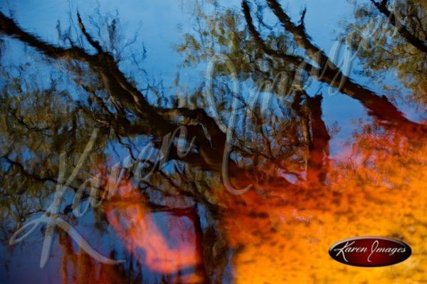Fire Water Suwannee River