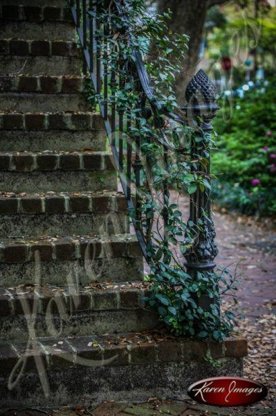 Ivy Staircase Savannah Georgia