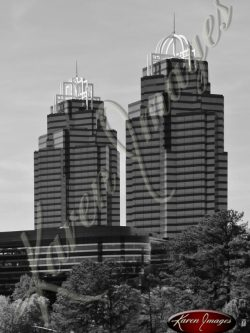 King-and-Queen-Atlanta-Georgia-Black-and-White