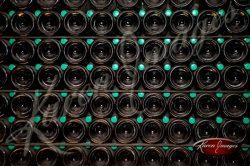 champagne bottles againg on lees