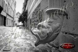 decorative french drain of a fish head