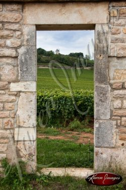 Meursault Vineyard framed by a clos doorway