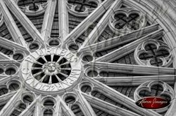 Louis XIV Rose Window Orleans France