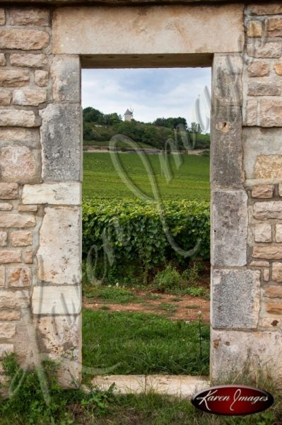 Meursault Vineyard framed by a clos doorway