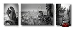 Set of 3 images of gargoyles of Notre Dame cathedral paris france