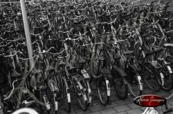bikes in bicycle parking lot central station amsterdam