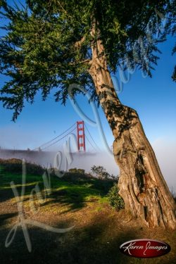Golden Gate Bridge color photo San Francisco California