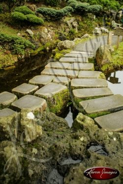 Japanese Tea Garden San Francisco color image