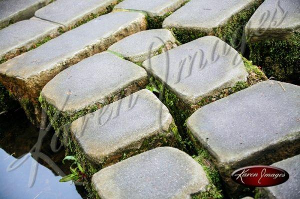 Japanese Tea Garden San Francisco color image of stepping stone path