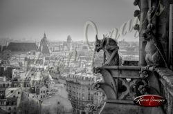 07_gargoyles_over_paris_notre_dame_cathedral_paris_black_and_white_photograph_paris_france