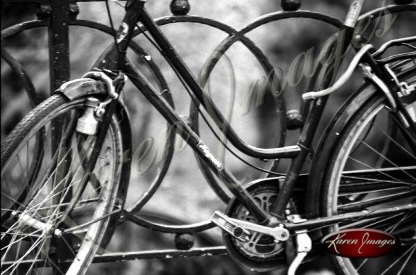 bike in brugge in black and white
