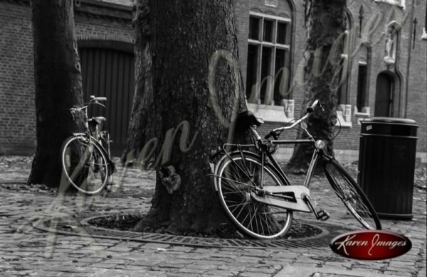 bike in brugge in black and white